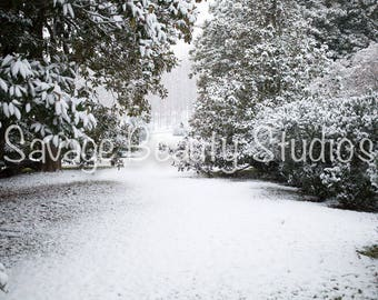 Digital Background with Snow, Winter Wonderland, Digital Download, Winter Backdrop, Digital Prop, Christmas Backdrop, Composite Photography
