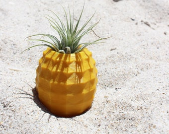Air Plant Holder, Pineapple Pot ~ Choose your color ~ Cute Desk Pot ~ With or Without Plant