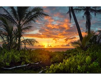 Sunrise Path - Hawaii Island photography by Harry Durgin