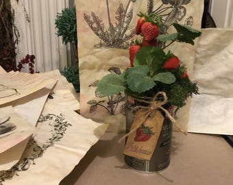 Faux strawberries in a rustic tin with moss