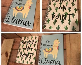 Llama Notebook // Cactus Notebook