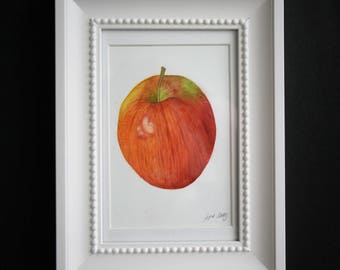 Original Watercolor Painting Red Apple