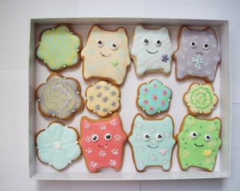 box of cookies,monster cookies, children gift