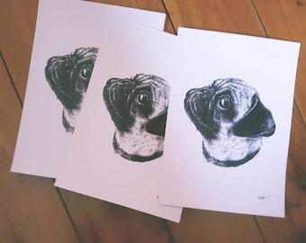 Pug Print ***limited edition ***