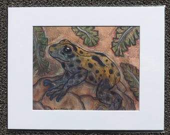 Blue and Yellow Poison Dart Frog (11X14 Matted Print)