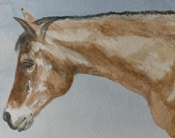 Animal Portrait, Horse Portrait, Your Animal's Portrait, Water Color, Painting