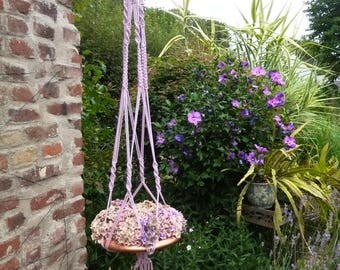 Purple-coloured suspension, for garden or home, in natural rope
