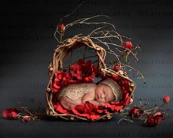 Digital background Newborn digital backdrop Valentine's day red flowers basket #81