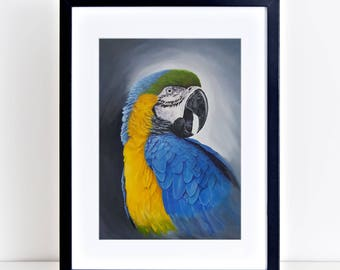 Blue and gold Macaw. Signed limited edition (100) 325gm fine art print by Griff
