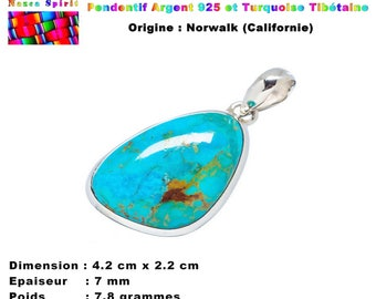 EXCLUSIVE! Native American pendant crafted in 925 stamped and Sleeping Beauty Turquoise