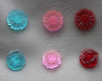 Set of 6 Magnets Roses and daisies flowers in resin