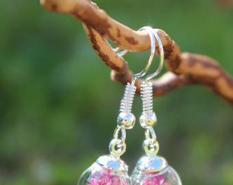 Pink earrings, dried flower glass Globe/ball