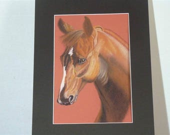 Chestnut horse head painted with pastel dry