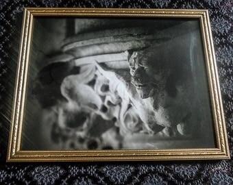 Gargoyle | Photography | framed