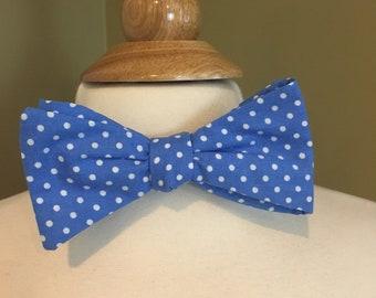 Cecil's blue polka dot bow tie