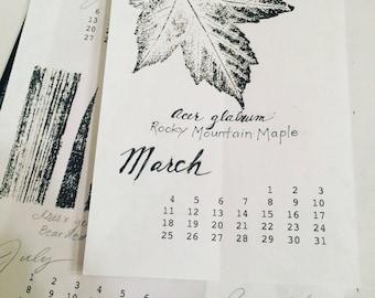Botanical Print 2018 Calendar