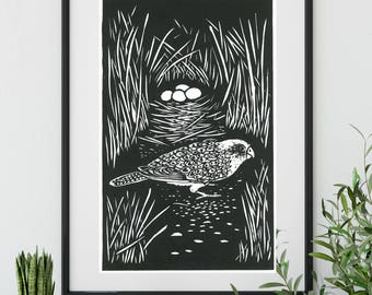 Linoprint/ Original Artwork/ Night Parrot/ Birds/ Australian Art/ block print / 30cm x 19cm/ hand printed/ unique gift/ australiana
