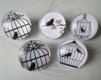 mixed 5 x snaps to glass cage/bird No. 20 mm round jewelry 5