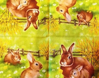 The Hare paper TOWEL and its small #AN075