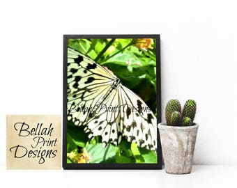 White Butterfly Printable Art, Butterfly Print, Butterfly Wall Art, Tropical Decor, Butterfly Digital Art Instant Download