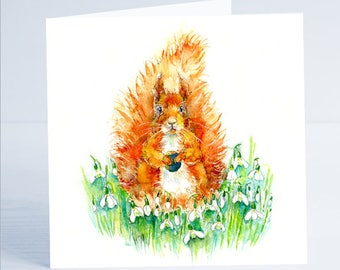 Spring Squirrel - Greeting Card - Taken from an original Sheila Gill Watercolour Painting.