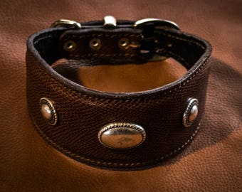 Whippet collar, in leather, solid brass conch