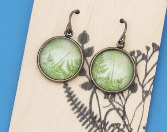 Pretty green woodland ferns, forest plants, Earrings, glass dome art, niobium hypo-allergenic