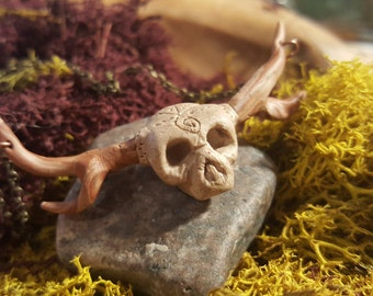Antler skull with carvings