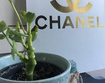 Chanel logo foil print