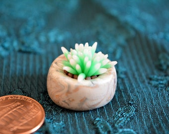 Mini Clay Succulent