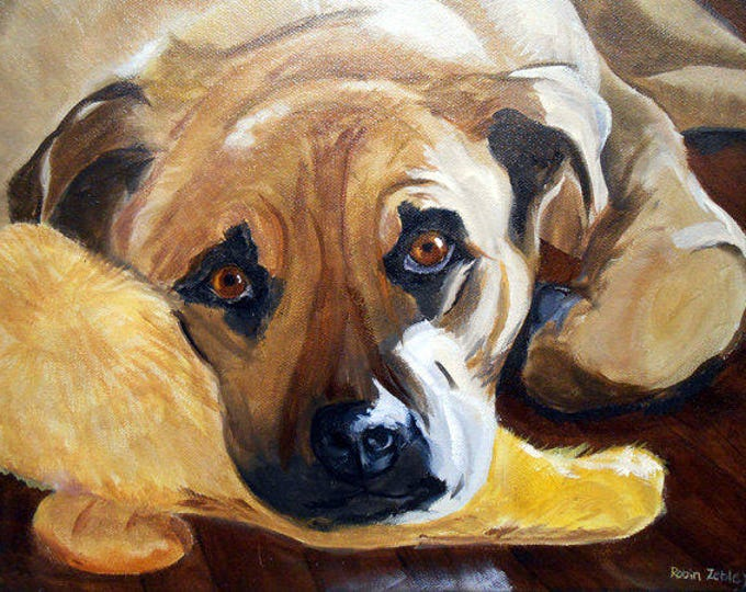 Pet Portrait Gift Certificate, Hand Painted Custom Oil Painting on Canvas, Artist Robin Zebley