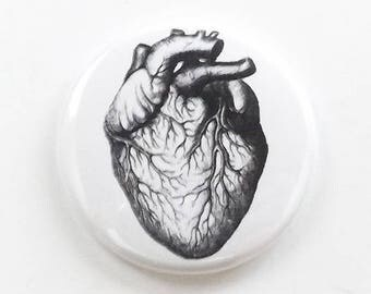 Medical Anatomy anatomical Heart one fridge magnet button pin anatomy coaster mirror bottle opener stocking stuffer goth gift refrigerator