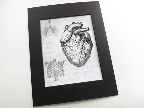 Medical Anatomy Art Print doctor office gift male nurse home decor brain heart skull spine chiropractor physician assistant human body goth