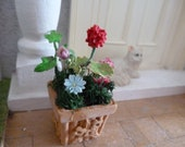 One 12 scale terracotta, garden planter. With cold porcelain flowers, moss, and dried flowers.