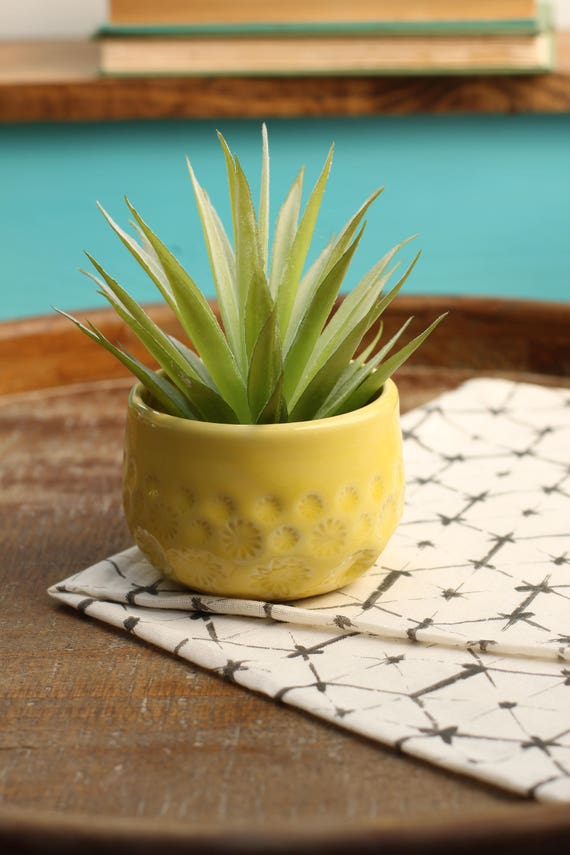 yellow air plant pot