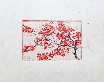 original color etching - cherry blossom - sakura - special edition printed on handmade paper from Nepal