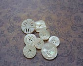 Antique Carved Mother Of Pearl Button