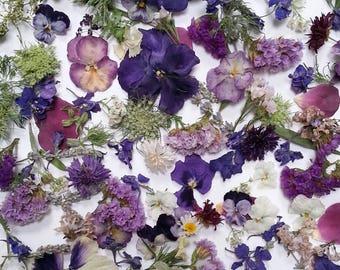 Wedding Confetti, Dried Organic Lavender, Real Dry Flowers, Aisle Decor, Petal Confetti, Flower Girl, 2 Clear Boxes of Flower Confetti