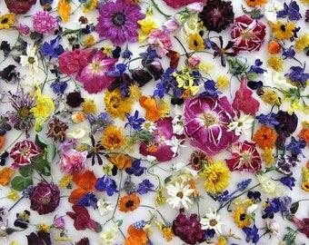 Bulk Dried Flowers, Wedding Confetti, Table Decor, Centerpieces, Craft Supplies, Aisle Decorations, Wedding Favors, Biodegradable, 100 cups