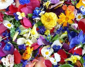 Bulk Dry Flower Confetti, Wedding Confetti, Aisle Decorations, Table Decor, Flower Girl, Craft Supplies, Flower Petals, Centerpiece, 12 Cups