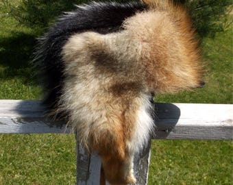 Skunk fur hat with coyote front and coyote ear flaps and purple fleece liner