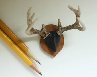 Miniature Antler Mount