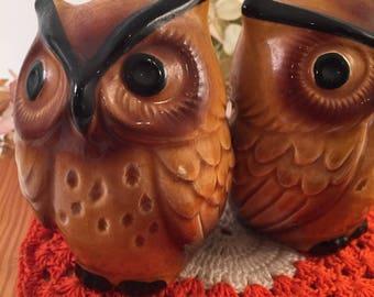 Vintage OWLS Owl Salt and Pepper Shakers Japan Retro Ceramic