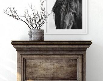 Farmhouse Art, Horse, Black Horse Photograph, Equine Wall Art