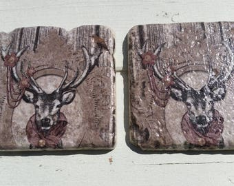 Stag Deer Set of 2 Tea Coffee Beer Coasters