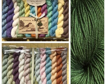 Anne of Green Gables... 24 Color Mini Skein Set, Canon Hand Dyes John Fingering Yarn