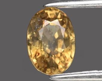 ZIRCON (34518) * * *  Sparkly 6.5 x 4.5mm Yellow Zircon - Tanzania Mined