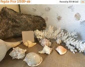 Wedding Sale Beach Shell & Starfish Placecard Holders / Photo Stands /Real Sea Shell Holders/ Cut Shells Beach Decor Wedding Guest Name Plac