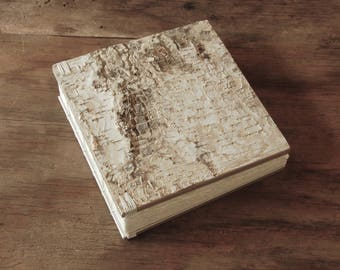wedding instant photo guestbook or scrapbook birch bark - silver natural rustic woodland  unique wedding anniversary gift ready to ship