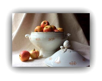 Antique French Country Style Porcelain Soup Tureen - French Country Home Decor -Rustic Chic-French Fleamarket Finds